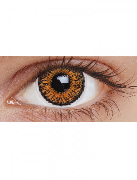 Brown Three Tone : Daily Contact lens