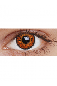 Hazel Three Tone : Daily Contact lens